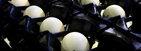 自動鶏卵選別包装装置